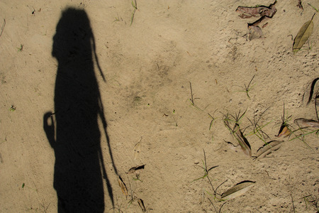 disheartened: Shadows of people in various  stance on soil background.