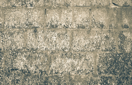 dirty old man: Texture of old wall with mold Stock Photo