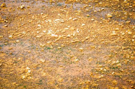 chromic: laterite soil
