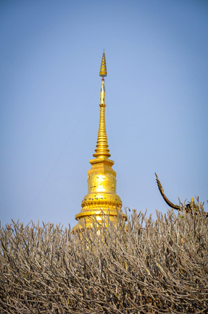 Golden Pagoda Stock Photo - 61046771