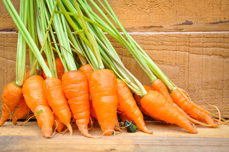 Fresh organic carrot Stock Photo