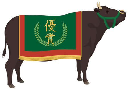 Japanese Wagyu beef.Champion cow.