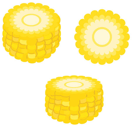 Cut corn set. Vector illustration.