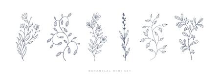 Hand drawn flower on white isolated background. Botanical illustration. Decorative floral picture.vvvv Illusztráció