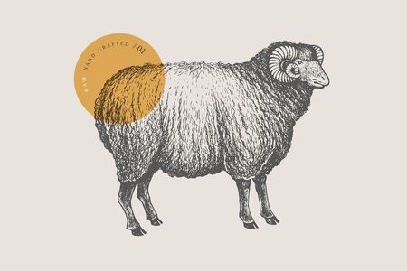 Graphic hand-drawn ram on a red background. Retro engraving with farm animal for menu restaurants, for packaging in markets and shops. Vector vintage illustrations.