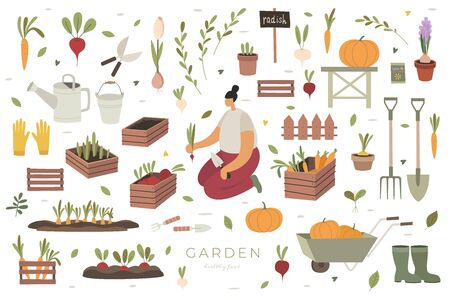 Girl plants vegetables in market garden. Large set of items on agricultural theme: boxes and pots with plants, shoes and gardener's inventory. Care and cultivation of plants. Flat style.