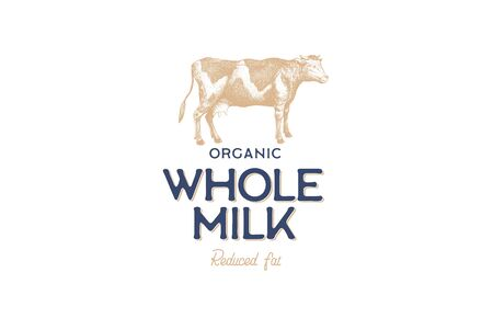 Hand drawn cow in technique of engraving. Template for icon, emblem in vintage style for dairy stores and markets with high quality food. Vector illustration of farm animal on light background.