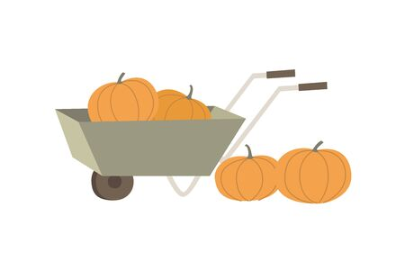 Garden cart with yellow pumpkins. Subjects on an agricultural subject. Care and cultivation of plants. Flat vector illustration on white isolated background.
