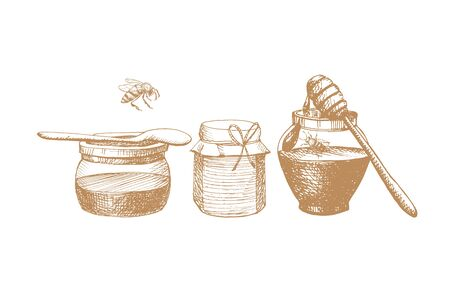 Jars of honey with spoon and honey dipper. Drawn objects on theme of honey, apiaries and beekeeping. Organic healthy and healing nutrition. Can be used for labels and posters for business promotion.