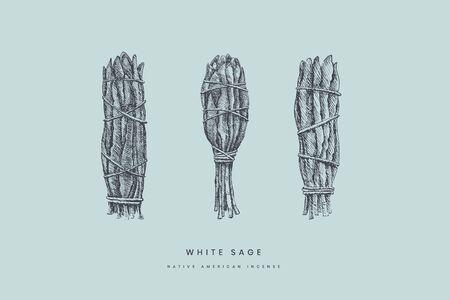 Ręcznie rysowane bandaże z białej szałwi o różnych kształtach. Starożytne kadzidło Indian Ameryki do sesji medytacji i duchowości. Vintage ilustracji wektorowych na na białym tle.
