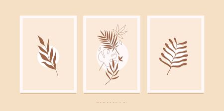 Set of posters with various exotic palm leaves for home decor, greeting card designs, invitation. Botanical vector illustration on light background. Minimalistic floral image for environmental design.