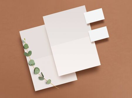 Mockup. Empty blank, business card and a branch of eucalyptus on a brown background. Template for corporate identity. Empty objects to place your design. Flat lay. Top view. 3D illustration.