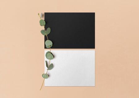 Mock up. Black and white postcards and eucalyptus branch on a nude background. Empty objects to place your design. Flat lay. Top view. 3D illustration. 免版税图像