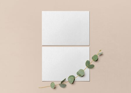 Two white postcards and a branch of eucalyptus on a nude background. Template for branding identity. Branding Mock Up. Blank objects for placing your design. Flat lay. Top view. 3d illustration.