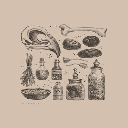 Monochrome set of mystical items for witchcraft vector illustration. Elements of witch or wizard set: skull of bird, banks and bubbles with potion, bone, herbs, magic stones. Wicca, pagan traditions.