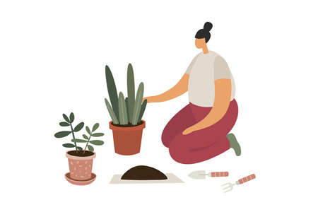 Care and cultivation of indoor plants. The girl prepares the ground for transplanting. Indoor Floriculture. Trendy flat  illustration.