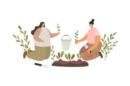 Two young girls planting seedlings on the beds. People working in the garden. Rural scene of peasant labor. Ecotourism. Trendy flat vector illustration. 矢量图像