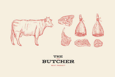 Set vintage hand-drawn different cuts of meats and cow. Engraving pictures for concept of farmers market and shop.