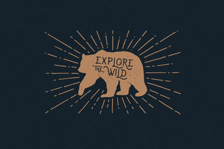 Hand drawn bear with an inscription explore the wild nature in the rays of light. Vintage label on the theme of the study of wildlife. Monochrome style.