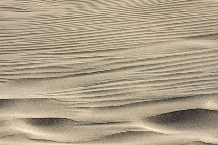 Background of a sand dune  Stock Photo
