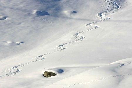 deep powder snow: Close view of fresh ski tracks in the powder snow Stock Photo