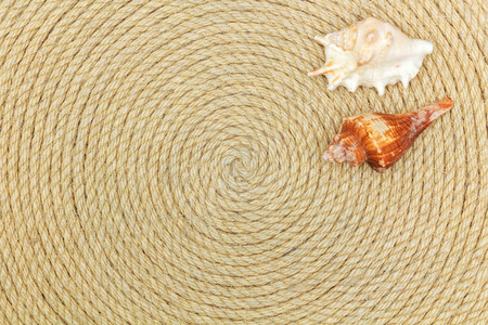 lashing: shells and sea network lie on background made of rope, flat lay Stock Photo