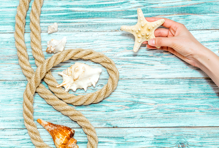 lashing: seashells in womens hands, view from above Stock Photo