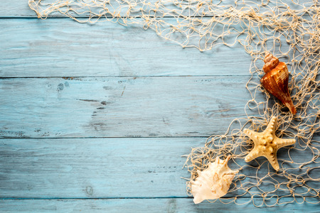 lashing: Marine Network and shells on blue boards, copyspace