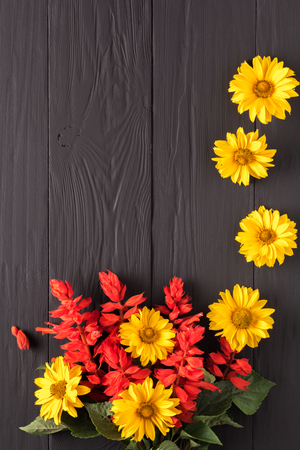 blossoming yellow flower tree: frame of flowers, background black boards, copyspace Stock Photo