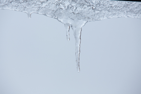 sopel lodu: beautiful icicle on a frost