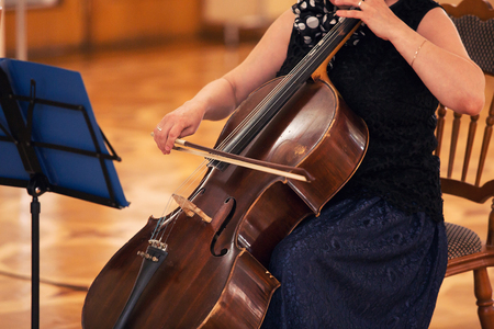 cellist: Cello music instrument Orchestra player cellist playing classic. Closeup of cello with bow in hands. Violoncello