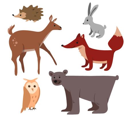 Nette Karikaturwaldtiere eingestellt: Bär, Rotwild, Fuchs, Eule, Kaninchen, Igeles. Standard-Bild - 64302256