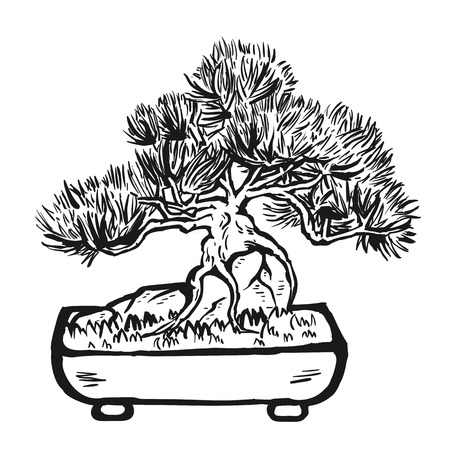 ink pot: Handdrawn decorative asian bonsai tree in the pot growing on a rock with branched trunk and conifer foliage.