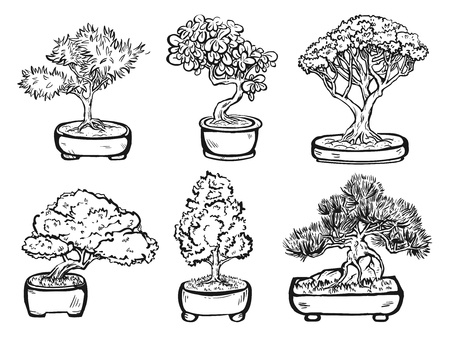 japanese garden: Set of handdrawn isolated decorative asian bonsai trees in the pots.
