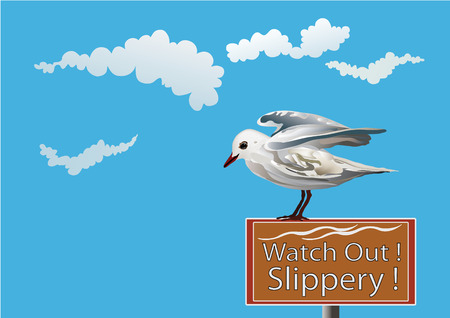 seagull and humor Vector