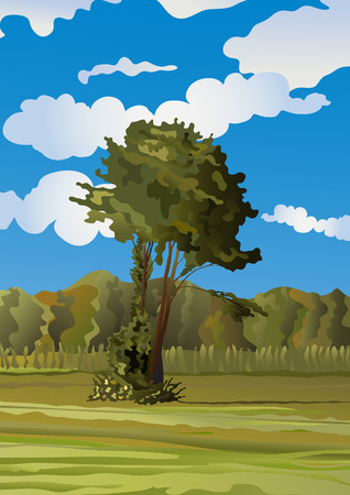 lonely tree on the meadow Stock Vector - 2912361
