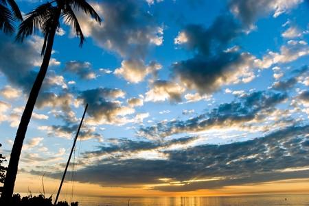 florida landscape: Sunset  in Naples,Florida