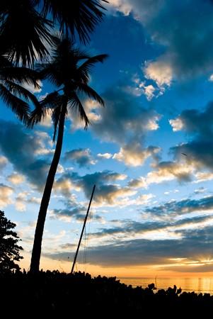 Sunset  in Naples,Florida photo