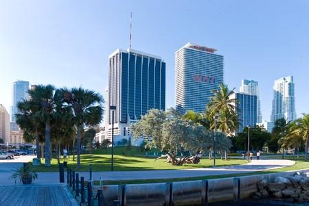 skyscraper -  business buildings and condos in Miami