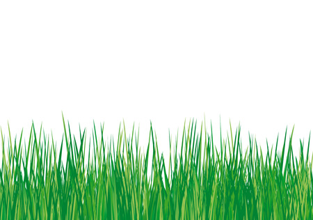 meadow in the spring time-Vector illustration Vector