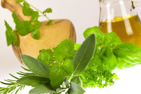 salve: Sage,Basil,Parsley and Mint,isolated on white