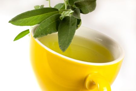 Tea of Sage Plant,isolated Stock Photo - 5539120