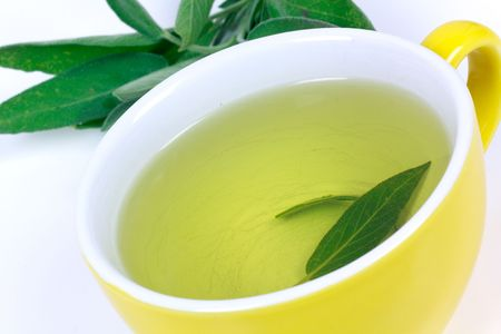 Tea of Sage Plant,isolated Stock Photo - 5539051