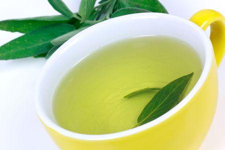 Tea of Sage Plant,isolated Stock Photo - 5539051