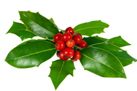 christmas decoration with holly leaves and berries,isolated on white photo