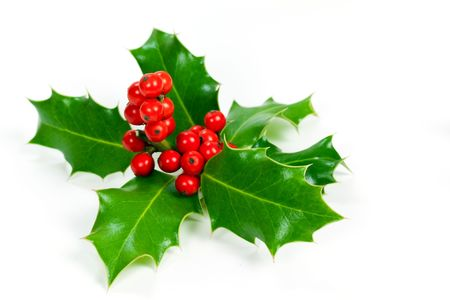 raminho: christmas decoration with holly leaves and berries,isolated on white