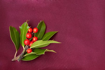 christmas ornament - holly berries and leaves photo