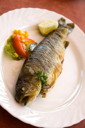 grilled trout with cream potato Stock Photo - 7406598