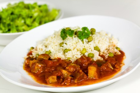 fresh stew of beef and pork with rice