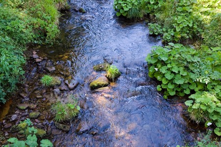 Forest river flowing gently over moss covered rocks  Stock Photo - 7491009